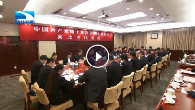 湖北代表团代表讨论报告决议:坚决贯彻落实十九大精神