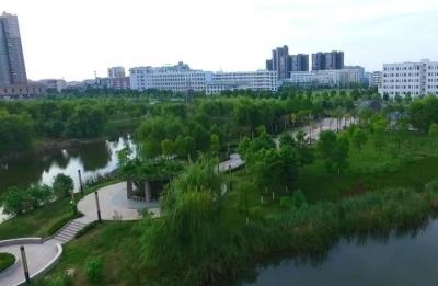 我市三年新增绿地面积百万平米
