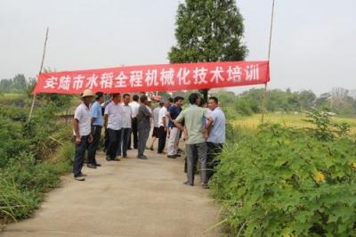 我市农机局邀请专家组到我市开展水稻田间测产