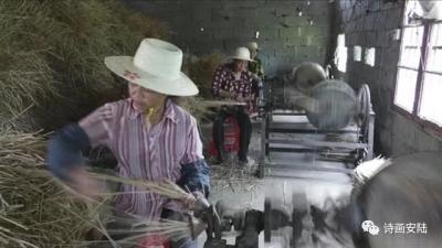安陆农民卖草绳 一年突破500万