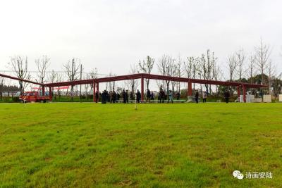 安陆文化名家为府河国家湿地公园注入文化内涵