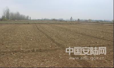 李店镇多措并举推进秋冬农业综合开发工作