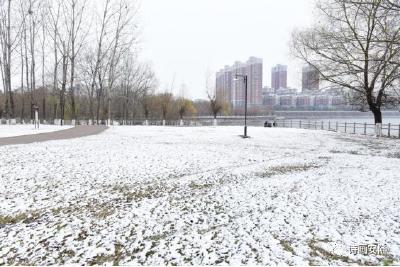 安陆今冬第一场雪 来啦!
