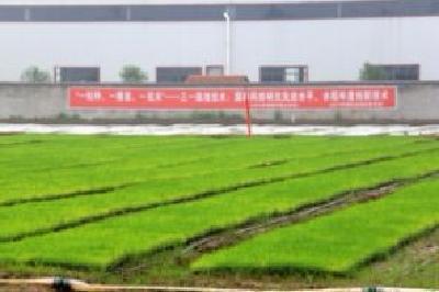 """安陆市荣获""""全国主要农作物生产全程机械化示范县"""" 称号"""