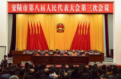 安陆市第八届人民代表大会第三次会议举行预备会