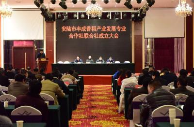 安陆市丰成香稻产业发展专业合作社联合社成立