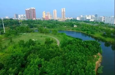 安陆:森林城市建设促进生态环境大改观