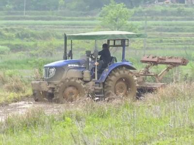 """农业机械化让农民当上""""甩手掌柜"""""""