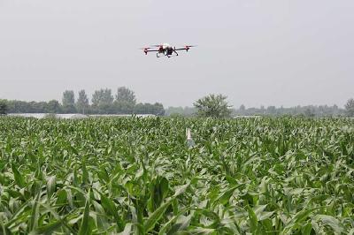推广无人机作业模式 病虫害防治效率更高