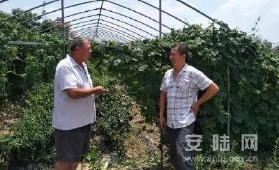 安陆党员领跑农民致富路