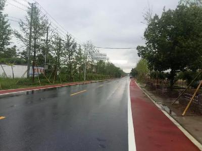 安全、通达、净美——安陆棠棣镇打造S243省道路长制示范线创建见成效