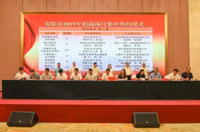 安陆市举行2019年民营经济创新奖励大会暨招商项目集中签约仪式