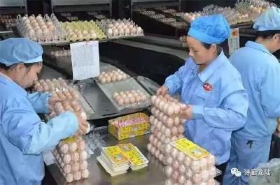 湖北神丹:创新引擎撑起蛋品王国