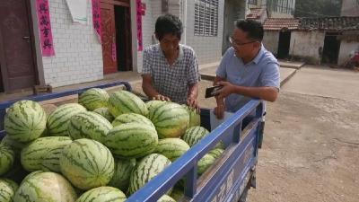 烟店龚岗村:帮扶队员变身销售员 贫困群众感到心里甜