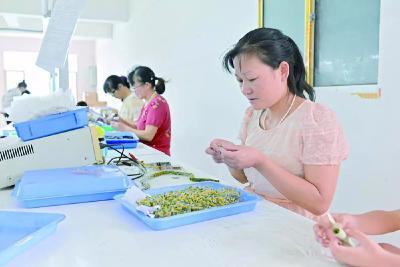 安陆七成贫困劳动力实现就业