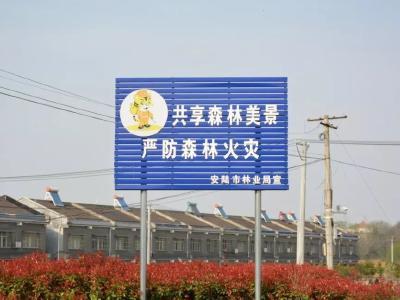 安陆市人民政府关于森林防火戒严的命令
