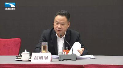 胡明刚代表:高质量发展生猪生产  实现生猪稳价保供