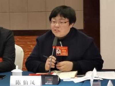 陈仙凤委员:加强教育扶贫 关注特殊教育
