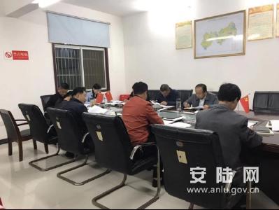 巡店镇传达学习党的十九届四中全会精神
