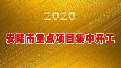 图文直播 | 安陆市2020年重点项目集中开工
