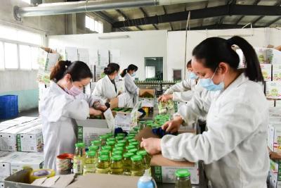 安陆市棠棣镇18家企业全部复工复产