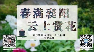 直播|居家抗疫 不负春光!春满襄阳·云上赏花