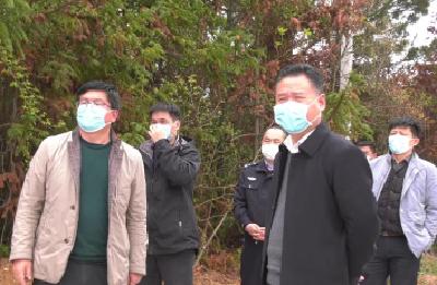 胡明刚调研督导全市森林防火和清明节期间安全祭扫工作