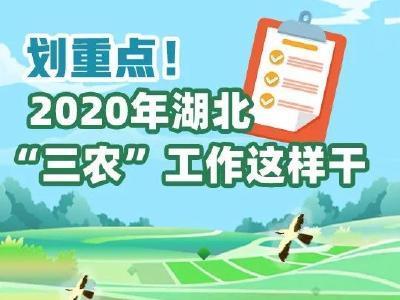 补短板,奔小康!2020年省委一号文件发布