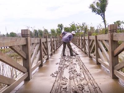 安陆府河国家湿地公园:抢抓晴好天气 修复水毁设施