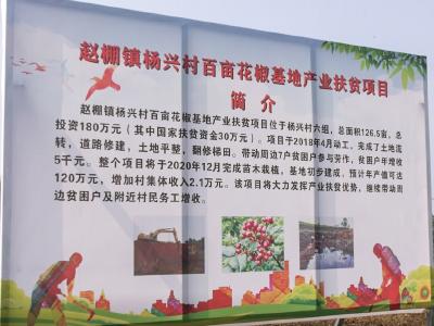 安陆市杨兴村:加快乡村建设 力促农业经济腾飞