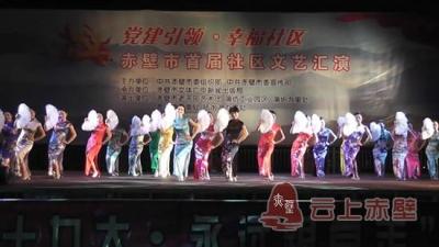 蒲圻办事处社区文艺汇演专场晚会举行