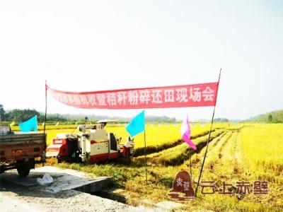 赤壁农机开展秸秆粉碎还田