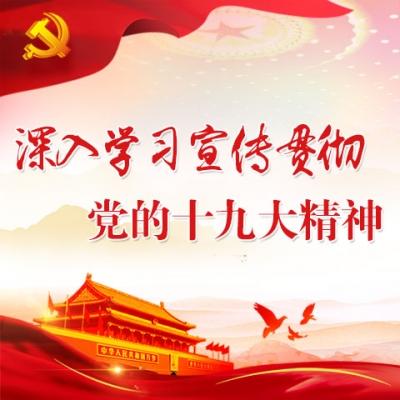 《学习贯彻十九大精神 学报告 谈体会》(十三)吴建平