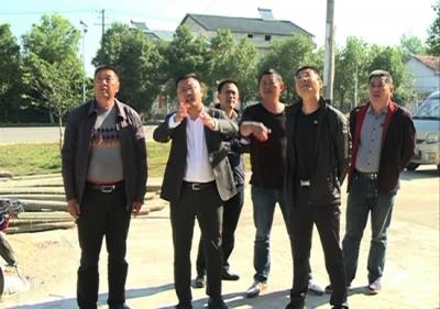 市领导调研东柳村乡村振兴工作