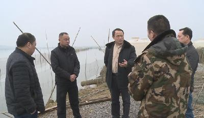 市领导检查神山镇水域环境保护工作