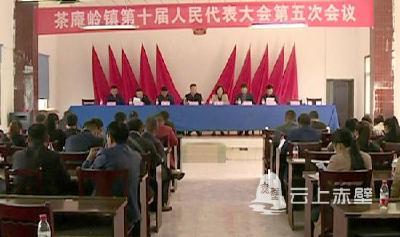 茶庵岭镇召开第十届人民代表大会第五次会议