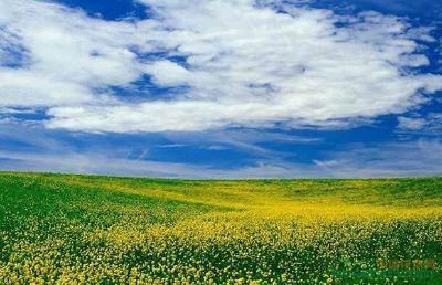 湖北构建天地一体生态环境监测网 环境监测产业迎来新机遇