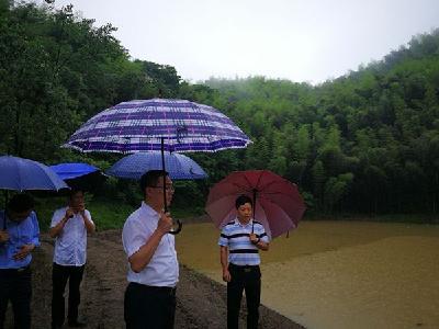 方高文巡查督导陆水湖办事处水库防汛和地质灾害点防控工作