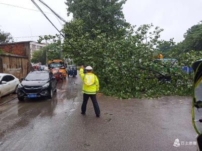 大风刮倒电线杆 赤壁交警、供电紧急抢修