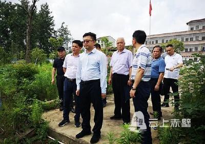 刘子恒检查陆水河防汛及河长制工作