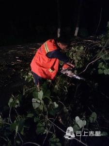 大风致107国道树木倒伏 赤壁公路深夜清障排险