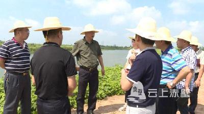 市领导检查黄盖湖防汛备汛工作