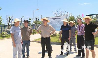 市领导调研督办乡镇污水处理厂建设