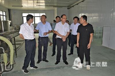 V视 I 盛文军调研督办车埠镇项目建设与民生改善工作