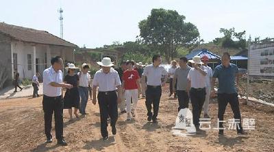 住咸省政协委员视察赤壁市沿江生态文明示范带建设
