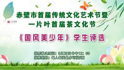 赤壁市首届传统文化节暨一片叶首届茶文化节《国风美少年》学生评选