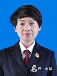 赤壁市检察院一级检察官 刘敏