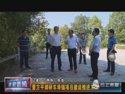 董方平调研车埠镇项目建设推进工作