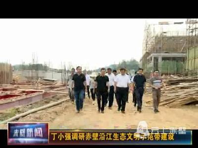 丁小强调研赤壁沿江生态文明示范带建设