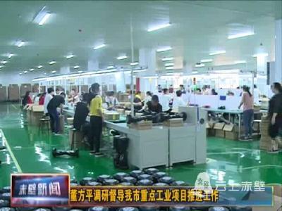董方平调研督导重点工业项目推进工作